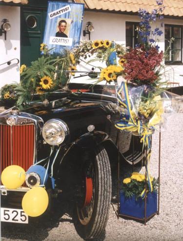 På våren finns odlade kvistar av många sorters blomsterbuskar som passar att smycka fordon och festbord. Spirea, äppelblom, syren och kaprifol hör till dem. Solros, lejongap, iris och praktriddarsporrar ger de svenska färgerna. Foto: Erland Andersson. Arrangemang: Inger Ivarsson.