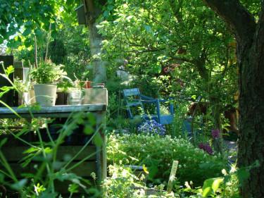 Charmiga och inbjudande bilder är fina inslag i trädgårdsbloggarna. Foto: Katarina Kihlberg