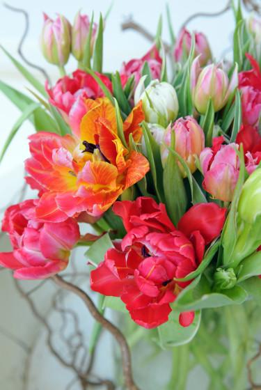 Tulpaner och fina grenar tillsammans.  Foto: Blomsterfrämjandet