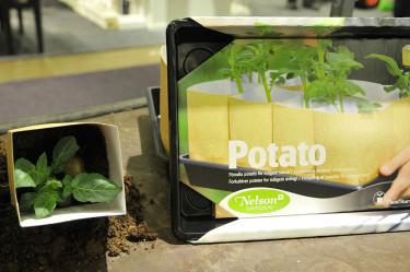Nelson Gardens förodlingskartong för potatis