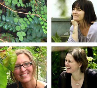 Annica Hansson, uppe t.h, Cecilia Holm, nere t.h, och Julia Andersson.  Foto: [Vi tre & trädgård](http://vitreotradgard.se/).