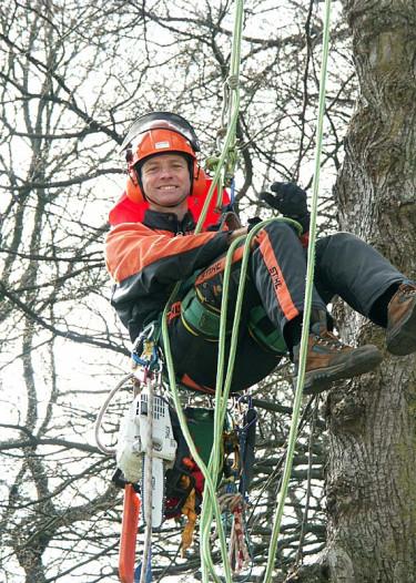 Kanske behöver du anlita en arborist om du har stora eller svårklippta träd? Foto: Sylvia Svensson
