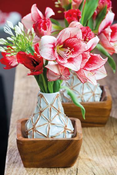Röda tulpaner tillsammans med Afrikas blå lilja och amaryllis en vacker bukett. Foto: Blomsterfrämjandet