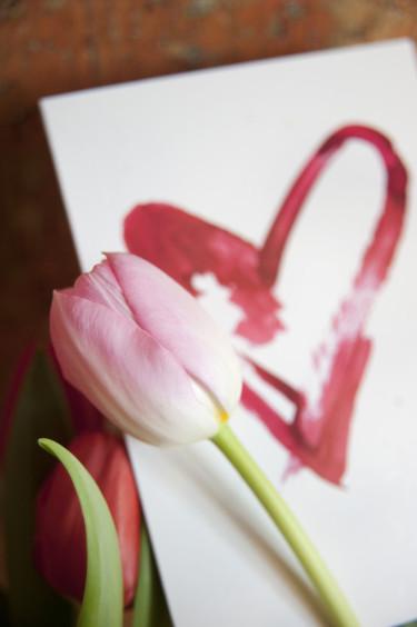 Rosa tulpan och hjärta Foto: Blomsterfrämjandet