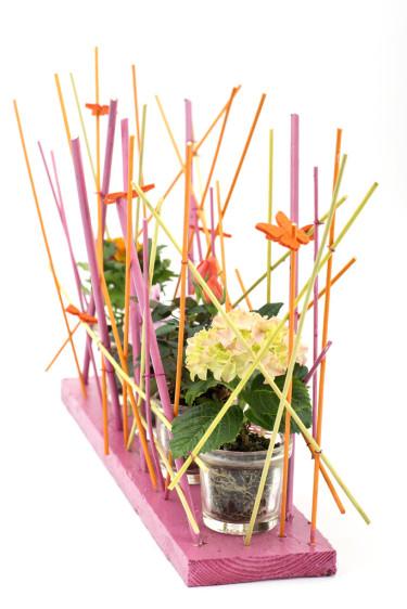 Välj mellan att ha flera likadana miniväxter på rad eller ha flera olika sorter - det blir fint vilket som! Foto: Floradania