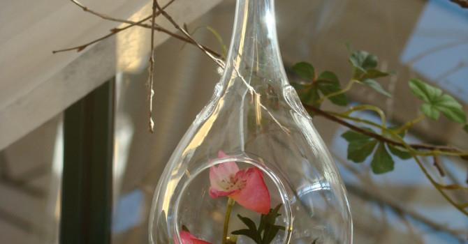 Fina glaskulor att hänga i växthuset.
