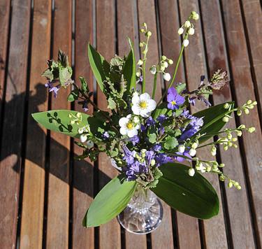 Liljekonvaljer och smultronblommor mm.