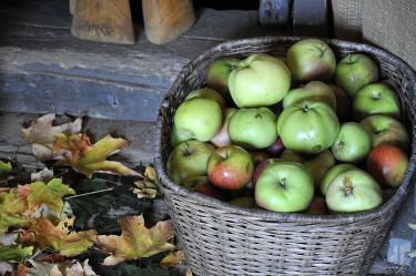 Äppelkorg är ett enkelt och billigt sätt att göra fint. Foto: Sylvia Svensson