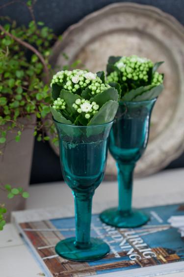 Miniväxter i höga glas blir väldigt vackert! Foto: Blomsterfrämjandet/Minna Mercke Schmidt