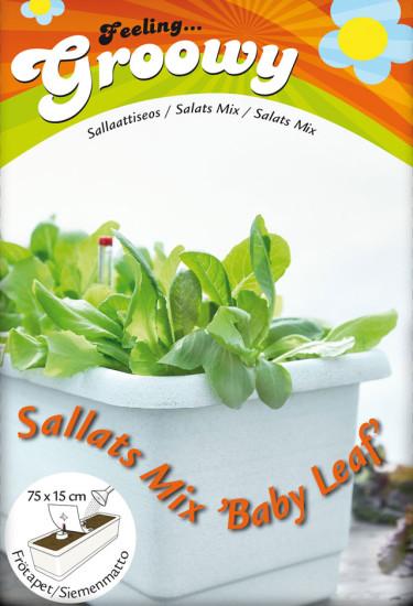 """Sallats mix """"baby leaf"""". Sex sorters sallat, skörda från sidorna och ät med hemgjord dressing. Foto: Nelson Garden."""