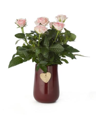 Härligt rosa rosenbukett. Foto: Floradania