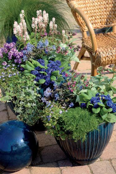 Vårflirtskombination 1. Foto: Blomsterfrämjandet, Hörnhems.