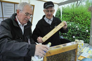 De enda som behövde mer vatten igår var Biodlarföreningens bin! Foto: Bernt Svensson