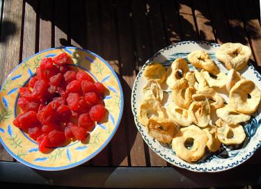 Soltorkade jordgubbar och äppelskivor. Foto och arr: Sylvia Svensson