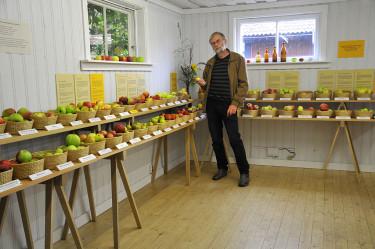 Botaniskas intendent Björn Aldén är ansvarig för utställningen. Foto: Sylvia Svensson