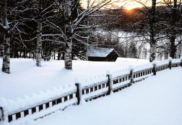 Vinter i Norrbotten.