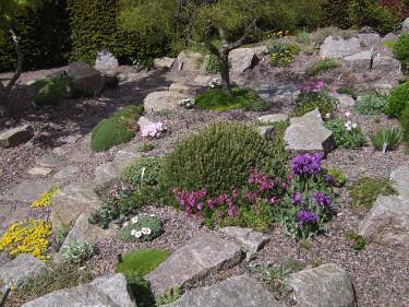 Stenparti med mycket sprängsten. Foto: Bernt Svensson