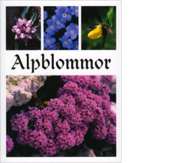 Boken av Ewa Hellström-Boström om alpernas blommor.
