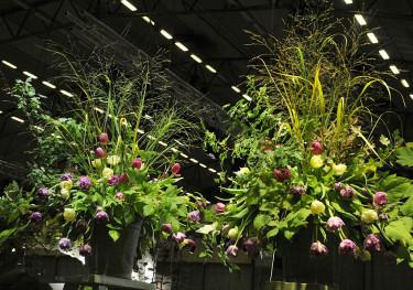 Elmia Garden, dekortion Foto: Bernt Svensson