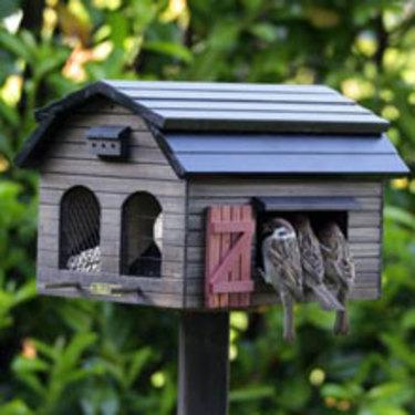 Fågelholk som ger möjlighet till fyra olika sorters matning samtidigt. [Finns hos Odla.nu](http://erbjudande.odla.nu/ff/?utm_source=odla&utm_medium=webb&utm_campaign=shopspalt1). Foto: Wildlife Garden