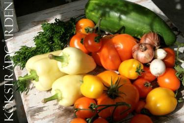 Gul gazpacho - morgonens skörd av råvaror!