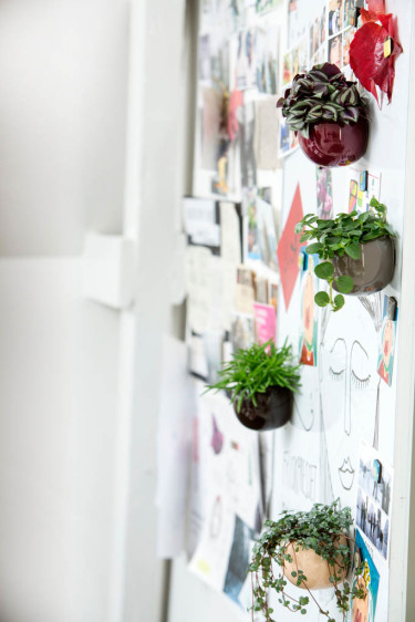 Gröna miniväxter i magnetkrukor piggar upp anslagstavlan. Foto: Floradania
