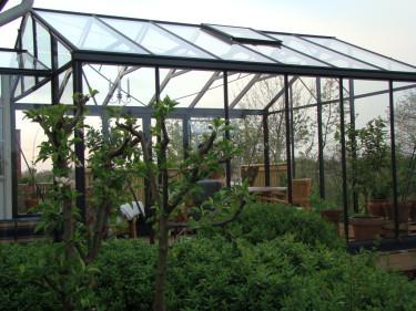 Att investera i ett växthus på en blåsig plats kan öka möjligheterna för lyckad odling radikalt. Foto: Katarina Kihlberg