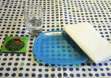 Saker du behöver till smörgåskrasseodlingen. Foto: Bernt Svensson
