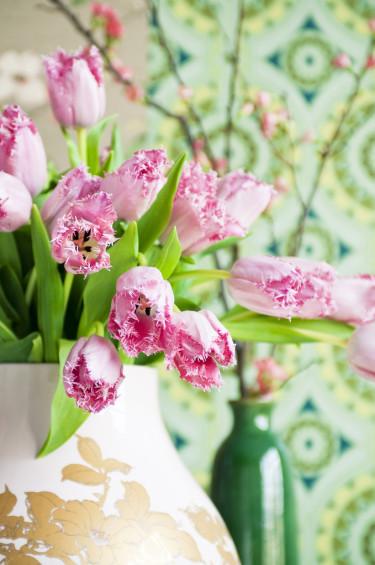 Rosa tulpaner och ljusgrön fondvägg ger en fin kontrast. Foto: Blomsterfrämjandet