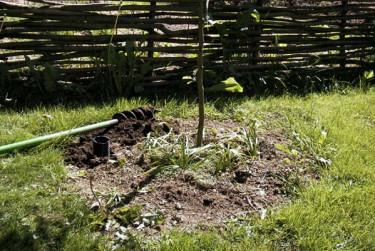 Att grävning tillhör de tyngre sysslorna i trädgården är nog de flesta överens om.