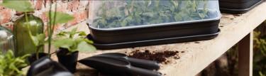 Minidrivhus & Odlingslådor