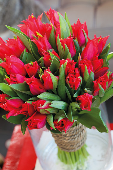 Ett fång med röda tulpaner är oerhört vackert! Foto: Blomsterfrämjandet