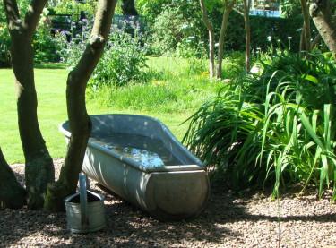 Gräsmattan kan täcka stora delar av trädgården eller vara en detalj bland många andra. Vilken funktion den än fyller behöver den omvårdnad för att växa sig stark, grön och tålig. Foto: Katarina Kihlberg