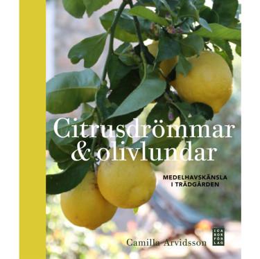 Citrusdrömmar och olivlundar Foto: Ica Bokförlag