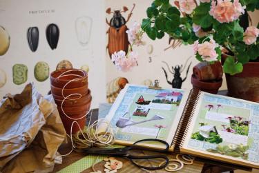 Minns din trädgård och planera för nästa säsong genom att göra trädgårdens egen scrapbook. Foto: Klas Hjelm.