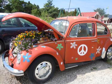 T o m bilen blommar! Foto: Sylvia Svensson