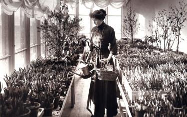 Kronprinsessan Margareta. Foto: Blomsterfrämjandet/Royalcourt.
