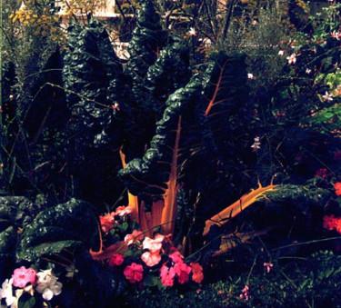 Balanserad gödsling bäst för trädgård och miljö.