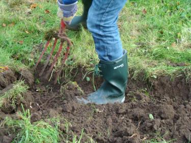 Trädgårdsarbete kostar ingenting! Särskilt inte när man låter maken gräva!  Foto: Katarina Kihlberg