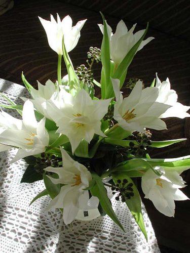 Vita liljetulapner med murgrönekvistar.
