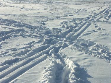 Ut och åka skidor om det finns snö!