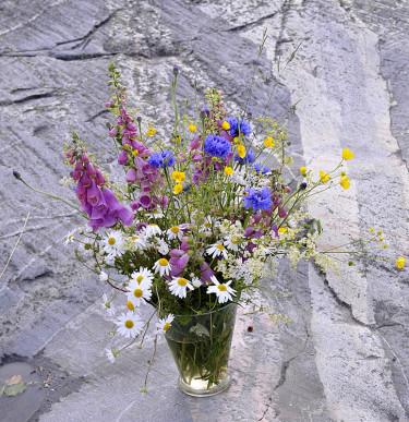 Kombinera blåklint med naturblommor och få en riktig midsommarbukett!  Arr+foto: Sylvia Svensson