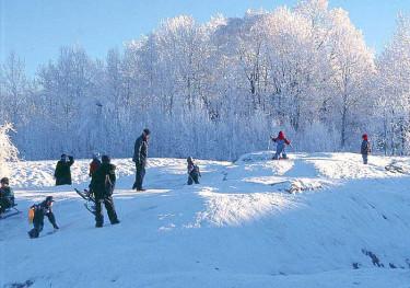 Snö brukade det inte saknas under min barndoms jular.