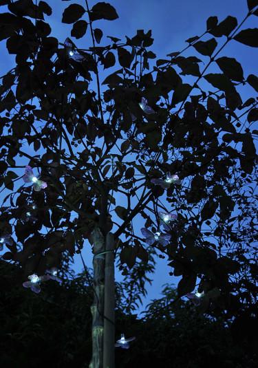 Häng en motivljusslinga i trädet - här med fjärilarFoto: Sylvia Svensson