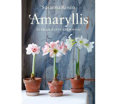 Amaryllis Älskad vinterblomma!