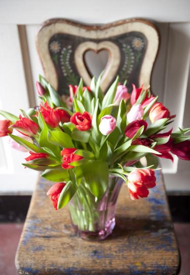 Tulpanbukett i rött och rosa Foto: Blomsterfrämjandet
