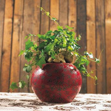Växter som förnyande element.