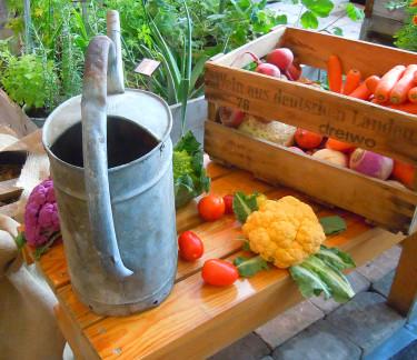 Läckra grönsaker. Foto: Sylvia Svensson