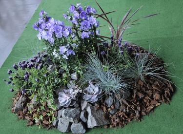 Floristelevernas plantering.