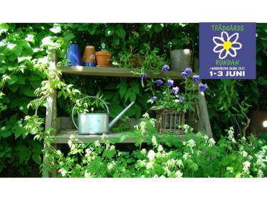 På trädgårdsrundan kan du hämta inspiration i stort och smått. Här en bild från Ingemo och Per Gyllings fantastiska trädgård i Glumslöv.